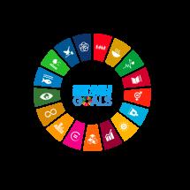 Social Development Goals der UNO